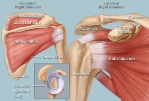 shoulder surgery victoria bc
